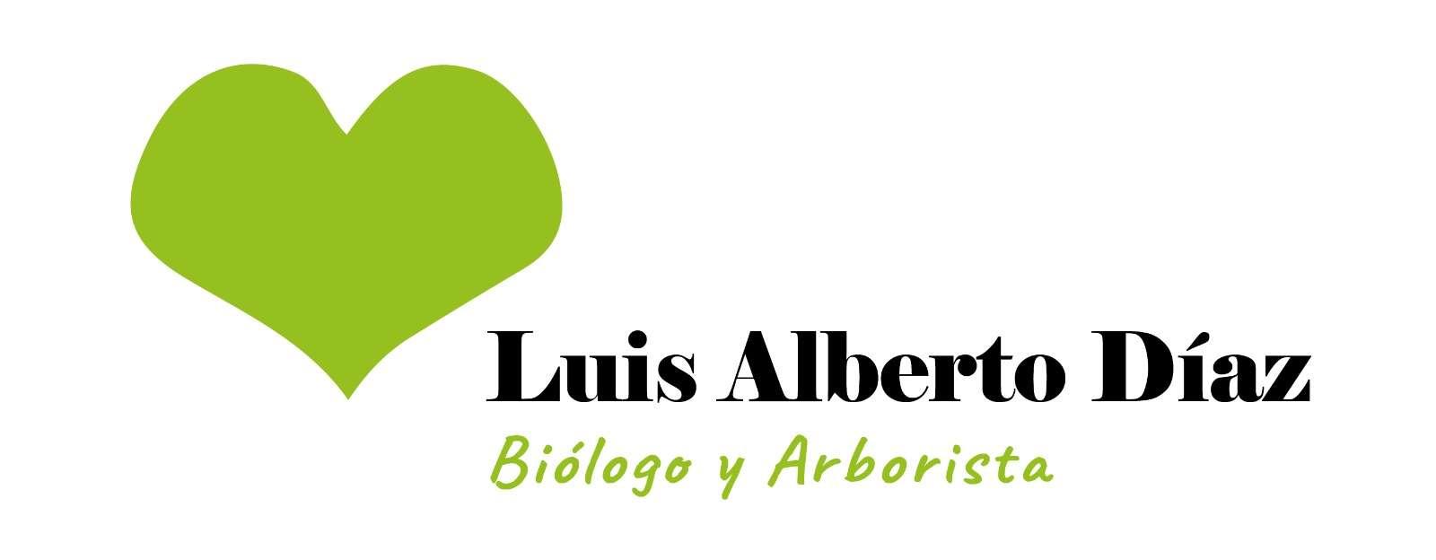 LUIS ALBERTO DÍAZ-GALIANO MOYA