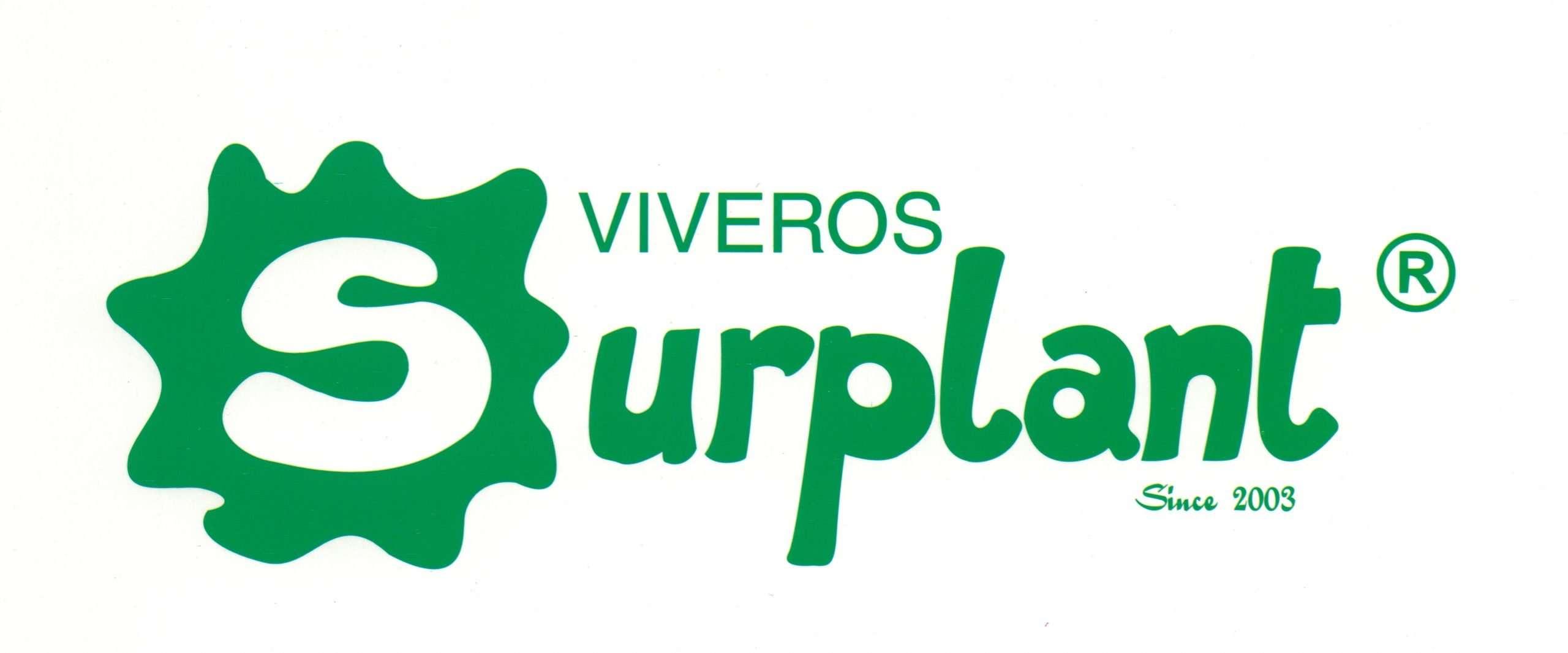 VIVEROS SURPLANT